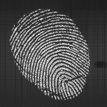 Touch Biometrix_High Res Fingerprint
